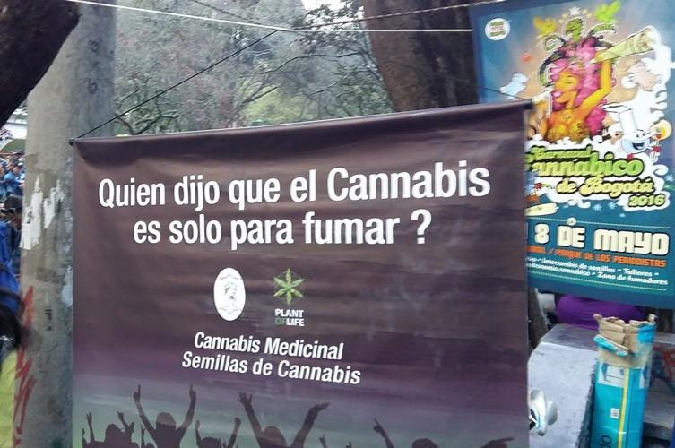 Carnaval cannábico
